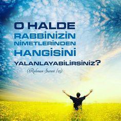 #rabbim #nimet #şükür #insan #şükür #ayet #hayırlıcumalar #türkiye #istanbul #rize #trabzon #eyüp #yeşil #ilmisuffa