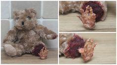 Zombie Teddy Bear with Skeleton Foot