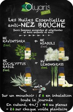 SYNERGIE NATURELLE AUX HUILES ESSENTIELLES SPÉCIALES NEZ BOUCHÉ - Olyaris Heath Care, Health Site, Doctor Advice, Natural Health Remedies, Healthy Eating Tips, Green Life, The Cure, Healthy Living, Essential Oils