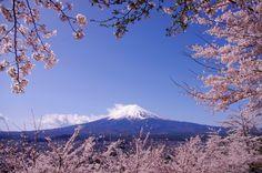 Mt Fuji in Spring. Foto de Kaz Empson