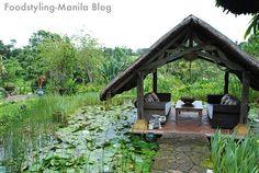 quiet garden spot over a pond Jungle House, Tagaytay, Suns Out, Moon Garden, Backyard, Patio, Pond, Gazebo, Gardens