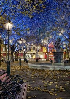 Sloane Square, Chelsea, London -  by Elaine Nasser The World of Photography - Community - Google+