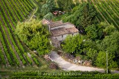 Photograph: Rhone Vineyard Vaison la Romaine, France. One of a continuing Sunday Wine Shot series of images.