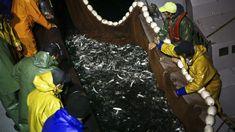 Novo Acordo Bilateral das Pescas entre Portugal e Espanha ainda não está fechado, por isso os dois países mantém regras do acordo que acabou em 2017. Ministra do Mar diz que negociações continuam. http://observador.pt/2018/01/01/portugal-e-espanha-mantem-regras-de-acesso-a-pesca-em-aguas-de-cada-um-destes-paises-ate-novo-acordo/