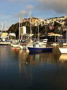 Oriental Bay, Wellington, New Zealand ...My home!