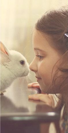 Bunny kisses! My bunny does this with me!!! And she looks just like this one!!!
