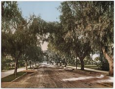 Marengo Ave., Pasadena, California 1898