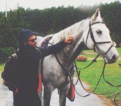 Horse #vscocam