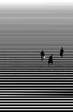 Composição: linhas e ponto de fuga (infinito)