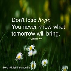 Don't lose Hope, you never know what tomorrow will bring. Don't Give Up Quotes, Hope Quotes, Quotes To Live By, Never Lose Hope, Never Give Up, What About Tomorrow, Positive Inspiration, Religious Quotes, Words Of Encouragement
