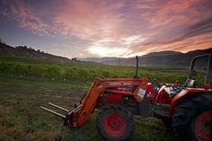 Winery www.montecreekranch.com Ranch, Vineyard, Pictures, Guest Ranch, Photos, Resim, Clip Art