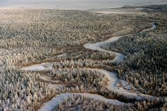 Aerial view of taiga (boreal forest) with a newly frozen river in the autumn. Arctic landscape picture galleries by Bryan & Cherry Alexander Photography. Arctic and Antarctic photography experts. Aerial View, Arctic, Westerns, City Photo, River, Pictures, Photography, Outdoor, Image