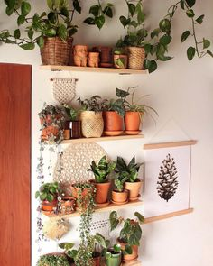 17 Amazing Vertical Garden Ideas for Your Small Space Joining Mark's hashtag today Room With Plants, House Plants, Plant Wall, Plant Decor, Home Interior, Interior Design Living Room, Inspiration Wand, Deco Design, Diy Home Decor