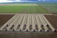la raccolta di soya nel Mato Grosso...
