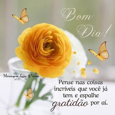 Rose, Flowers, Plants, Imagenes De Amor, Good Nite Images, Good Morning Images, Good Morning Photos, Psalms, Amigos