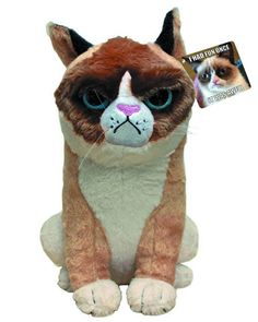 Grumpy Cat Plush! grumpy cat memes - Cat memes - kitty cat humor funny joke gato chat captions feline laugh photo
