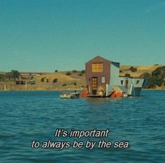 quotes and words Stuff To Do, Things To Do, Random Stuff, Agnes Varda, The Wicked The Divine, Beach Vibes, Film Quotes, Quotes Quotes, Heroes Of Olympus