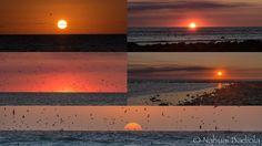 Mil y una puestas de sol, Lady Elliot Island
