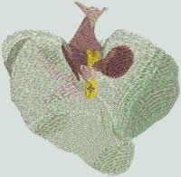 BFC-Creations Machine Embroidery Orchids and Free Design