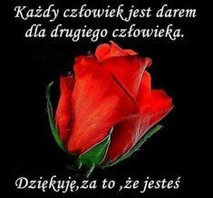 Człowiek dla człowieka - #człowiek #człowieka #dla #owiek #owieka - - - #człowiek #człowieka #dla #owiek #owieka Rose Images, Sister Quotes, Quotes For Kids, Positive Affirmations, Motto, Good Night, Inspirational Quotes, Humor, Massage