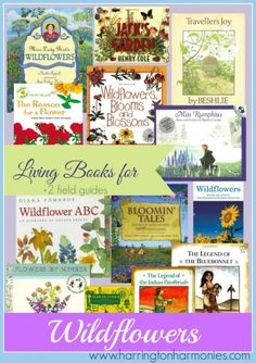 Wildflower Unit Study Living book selection for a wildflower nature study. Teaching Science, Science For Kids, Science And Nature, Science Books, Earth Science, Preschool Science, Creative Teaching, Mr Wonderful, Homeschool Books