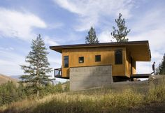 Pine Forest Cabin / Balance Associates Architects