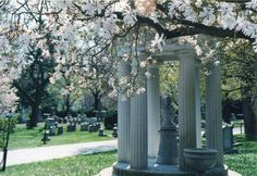 Springtime in Mount Auburn Cemetery. Photo by Loren Rhoads.