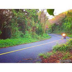 【kenta1250moto】さんのInstagramをピンしています。 《今朝pic. #ツーリング と見せかけて#通勤 #夜勤明け#朝#朝焼け#バイク#ヘッドライト#ライダー#バイクのある風景#山#森#ワインディング#motorcycle#rider #sunrise #road#morning#forest#bj_mycar#bestjapanpics#iPhone越しの私の世界#写真撮ってる人と繋がりたい#写真好きな人と繋がりたい#Aichi#Japan》