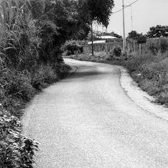 Road. Oaxaca