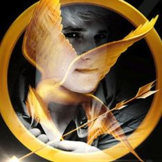 The Hunger Games Movie Fan Art: The Hunger Games fanmade movie poster - Peeta Mellark Hunger Games Poster, Hunger Games Movies, Hunger Games Trilogy, Mockingjay Pt 2, Hunger Games Exhibition, Star Wars Books, Suzanne Collins, Hunger Games Catching Fire, Board Games