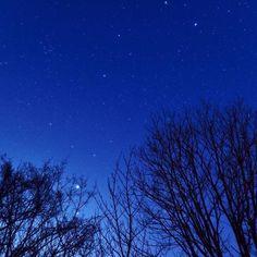 どうやったらもっと上手く撮れるんやろ。 #神野山 #フォレストパーク神野山 #星 #星空 #星座 #星景 #天体 #天体観測 #star #sky #奈良 #nara #広角 #単焦点 #ソフトフィルター #Nikon #d750 #写真撮ってる人と繋がりたい #カメラ好きな人と繋がりたい #写真好きな人と繋がりたい