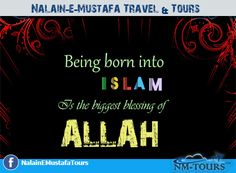 Travel Tours, Islamic Quotes, Blessed, Calm