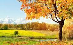 Afbeeldingsresultaat voor beautiful places