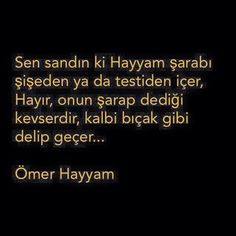 * Ömer Hayyam Albert Camus, Benjamin Franklin, Victor Hugo, Karma, Einstein, Diy And Crafts, Poems, Cards Against Humanity, Quotes