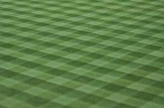 Find Major League Baseball Grass Turf stock images in HD and millions of other royalty-free stock photos, illustrations and vectors in the Shutterstock collection. Sports Wall Decals, Removable Wall Decals, Baseball Field, High Quality Images, Lawn, Grass, Interior Decorating, Major League, Landscape