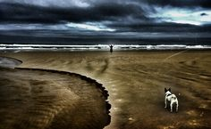 Dramatic moment in Noetzi, Knysna Knysna, Past, Country Roads, Camping, In This Moment, Beach, Water, Outdoor, Campsite