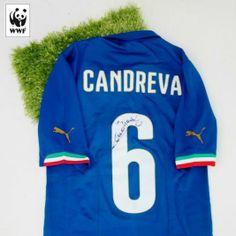 Aggiudicati la maglia ufficiale di Claudio Marchisio partecipando all'asta Charitystars WWF Italia http://www.charitystars.com/product/maglia-candreva-italia-ufficiale-authentic-autografata-brasile-2014-celebriamolamaglia-vivoazzurro Ci aiuterai a salvare l'Amazzonia e anche tu potrai dire #iotifoAmazzonia