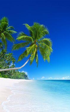 Strand Wallpaper, Beach Wallpaper, Iphone Wallpaper, Beach Pictures, Nature Pictures, Beach Photography, Nature Photography, Beautiful Nature Wallpaper, Tropical Beaches