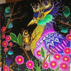 #tomislavtomic #zemljasnova #prismacolor #prismacolorpremier #colors#coloring#coloringbook #coloringbookforadults #adultcoloringbook #colortherapy #arttherapy #relax #bayan_boyan #artecomoterapia #divasdasartes