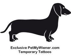 Dachshund Temporary Tattoos Wiener Dog Tattoos Dog by PetMyWiener