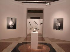 Biagiotti Arte Contemporanea di Firenze - Galleria d'arte - Arte.it