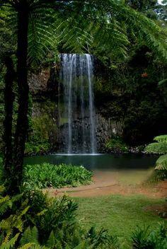 Milla milla falls (Atherton tablelands)