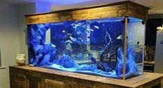 Blue Planet Aquarium Services What Does Your Fish Selection Say About Your Office Blue Planet Home Aquarium, Aquarium Fish, Blue Planet Aquarium, Aquarium Supplies, African Cichlids, Planets, Aquariums, Sample Resume, Shop