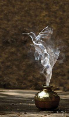 Magic Lantern, photo by ohkanon