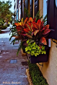 Colorful Charleston Window Boxes | InletImages - Photography on ArtFire