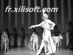 Ziegfeld follies, ballet and dogs