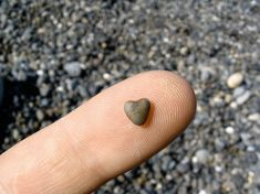 heart tiny rock