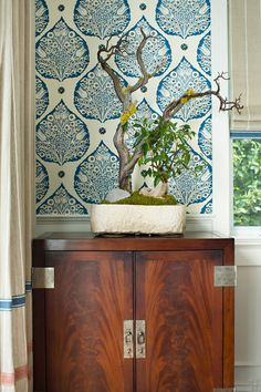 Cobalt Lotus Wallpaper – Bonesteel Trout Hall Closeup | Galbraith & Paul