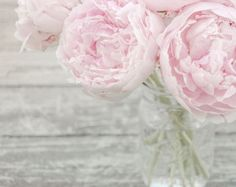 free shabby chic images paintings of peonies in urn | Pink Peonies in a Mason Jar, Fine Art Photography Print, Shabby Chic ...