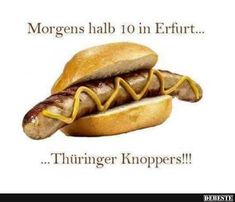 Morgens halb 10 in Erfurt.. | Lustige Bilder, Sprüche, Witze, echt lustig Hot Dog Buns, Laugh Out Loud, Pumpkin Carving, Haha, Have Fun, Funny Pictures, Food And Drink, Jokes, Ethnic Recipes